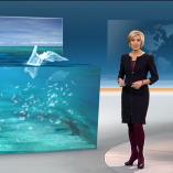 """Meeresmüll"", heute 19Uhr, 14.01.2014, Moderation Petra Gerster, © ZDF"