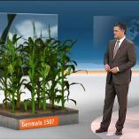 """Genmais″, heute 19Uhr, 11.02.2014, Moderation Matthias Fornoff, © ZDF"