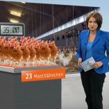 """Masthähnchen"", Mittagsmagazin, 20.03.2014, Moderation Susanne Conrad, © ZDF"